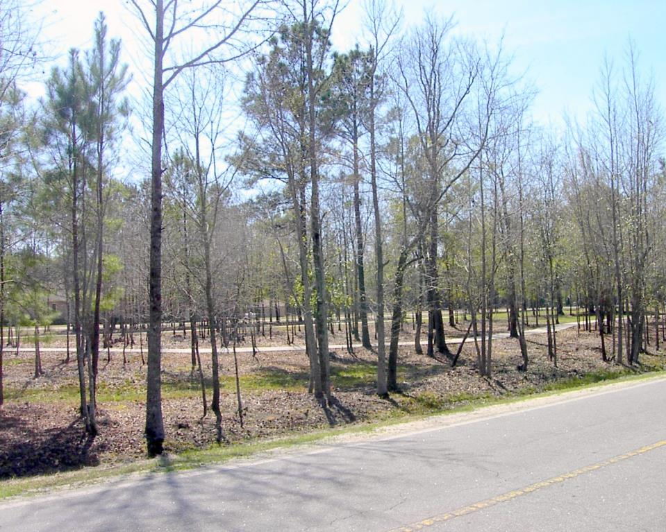Guyton Walking Trail
